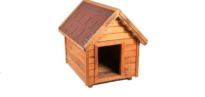 Köpek Kulübesi Nasıl Yapılır?